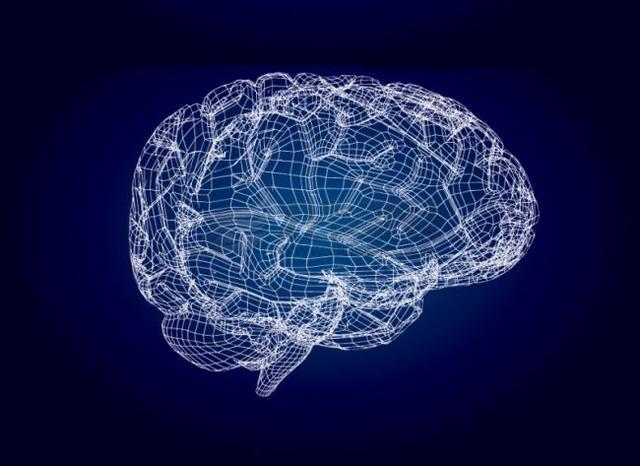 逻辑思维的四个基本原则